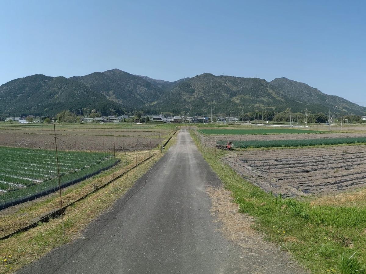 東本梅の風景